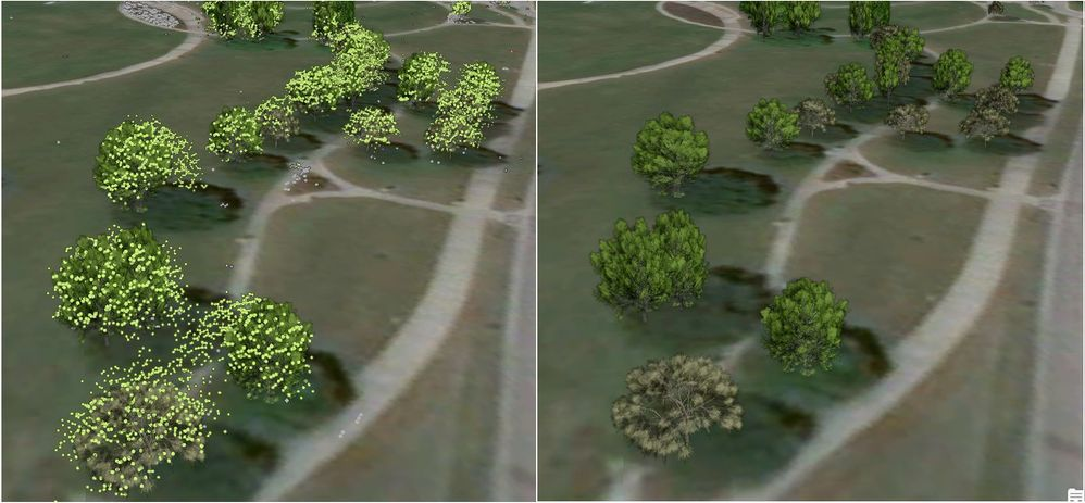Extracting tree location, height and width using density based clustering.