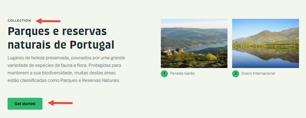 Collection in Portuguese with browser language set to English