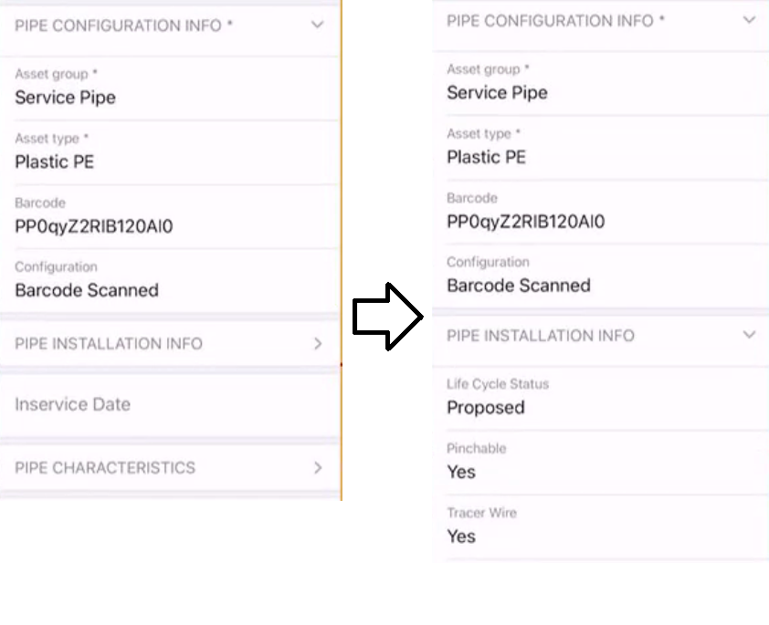 ArcGIS Field Maps Smart Form example