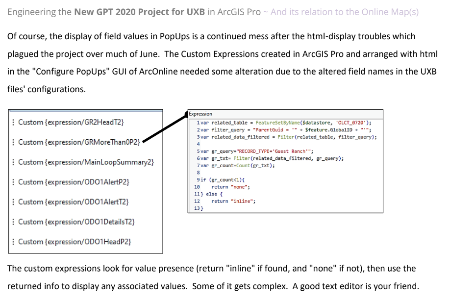 """Script queries Related Records for a certain Record_Type, then return """"inline"""" or """"none"""" if any found (or not); Used in html """"display"""" argument (conditional display)."""