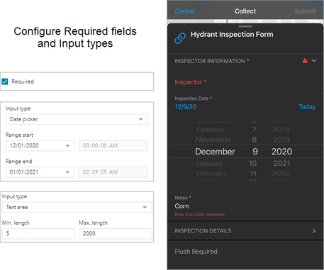required-fields-and-input-types.png